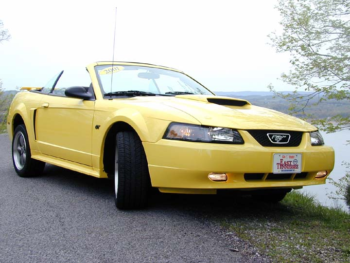 2001 ford mustang for 2001 ford mustang convertible top motor